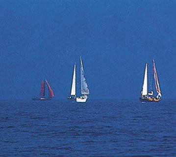 Yelkenler Fora: Bodrum Kupası