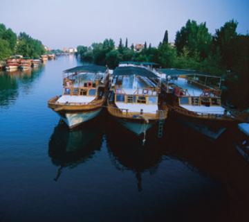 Manauna'dan Manavgat'a: Sarısu'da kaplan avı