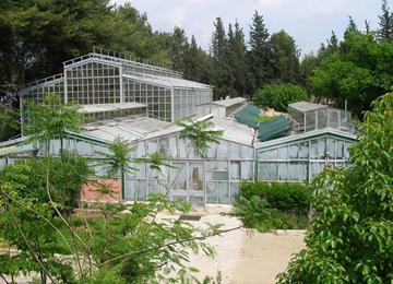 Botanik Bahçesi, İzmir